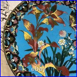 Antique Japanese Cloisonne Charger Meiji Period featuring BUTTERFLY & FLORALS