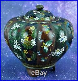 Antique Japanese Meiji Period Cloisonne Footed Jar with Lid 4 ¼ (BI#MK/200227)