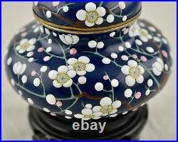 Antique Meiji-Period Japanese Cloisonne moriage lidded jar by Kumeno Teitaro