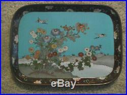 Fine Quality Japanese Cloisonne Tray, Meiji Period, Flowers, Birds, Meiji Period