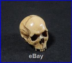 Japanese Carved Netsuke Dokuro Skull Edo Meiji Period Bone Horn Y146