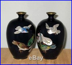 Lovely Pair Meiji Period Japanese Silver Wire Cloisonne Enamel Vases with Pigeons