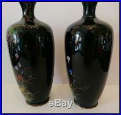 Matched Pair Of Signed Japanese Meiji Period Silver Wire Cloisonne Vases